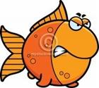 View Angoldfish's Profile