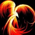 View Fire_Raven's Profile