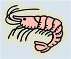 View omnishrimp's Profile