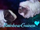 View RainbowGuinea's Profile
