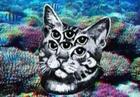 View zen_kitten's Profile