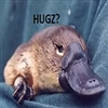 View Platypus's Profile