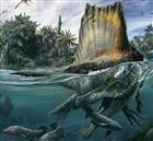 View SpinosaurusRocks's Profile