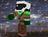 View epicolizard's Profile