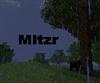 View mitzr's Profile