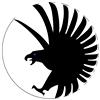 View Elusivehawk's Profile