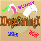 View XDogeGamingX's Profile