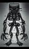View Skellox51's Profile
