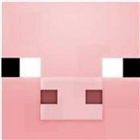 View CraftPiggMC's Profile