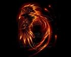 View Flamemaster44's Profile