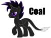View COAL_MINER_2013's Profile