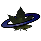 View SpaceWeed's Profile