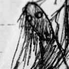 View Titaniccreatures's Profile