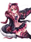 View NayukiMinase's Profile