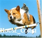 View House_corgi's Profile