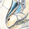 View sagebalsys1's Profile