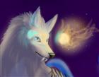 View wolfspirit658's Profile
