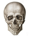 View Morticiantis's Profile