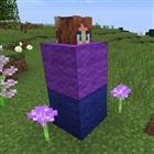 View PurpleKitti606's Profile