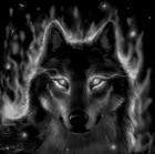 View dark_wolf457's Profile
