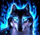 View DarkWolfMc's Profile