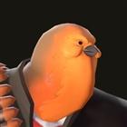 View owlmanhattan's Profile