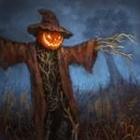 View king_scarecrow's Profile