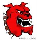 View redbulldog98's Profile