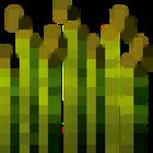 View Dino502Run's Profile