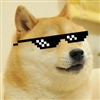 View Doge_King's Profile