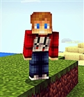 View EthanSkyBlock's Profile