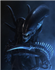 View QuickSilver_The_Xenomorph's Profile