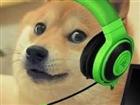 View DogeDoge_YT's Profile