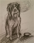 View uselesswetdog's Profile