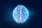 View BrainsMC's Profile