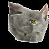 View CatosBobu123's Profile
