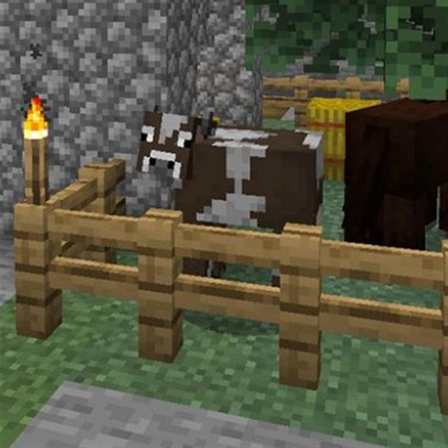 Top 12 Minecraft 1 14 2 Duplication Glitch Java - Gorgeous Tiny
