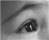 View samiertwitch's Profile