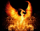 View dark_phoenixmcbe's Profile