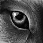 View IT_Vinny's Profile