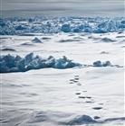 View polarscapeofficial's Profile