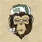 View themonkeyking420's Profile
