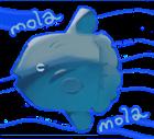 View ShinjiteFlorana's Profile