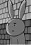 View fan_rabbit15's Profile