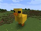 View duck1000's Profile