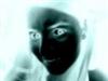 View Elena_the_Neko's Profile