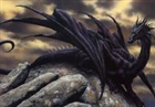 View Dragons5439's Profile