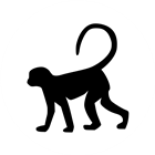 View MonkeyFG_'s Profile