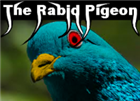 View RabidPigeon's Profile